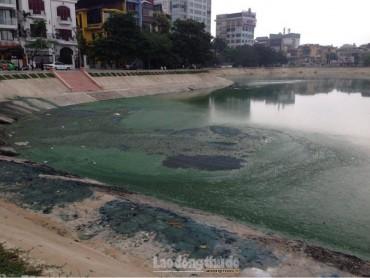 Hồ Ngọc Khánh ô nhiễm nặng sau khi cải tạo