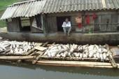 Xử phạt gần 4 tỷ đồng các đơn vị xả thải ra sông Bưởi