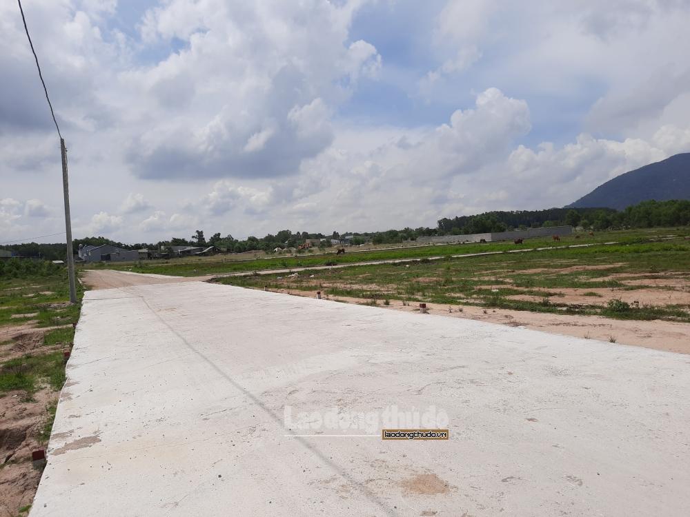 """""""Nóng"""" tình trạng dự án đất nền nông nghiệp, Bà Rịa - Vũng Tàu yêu cầu chấn chỉnh"""