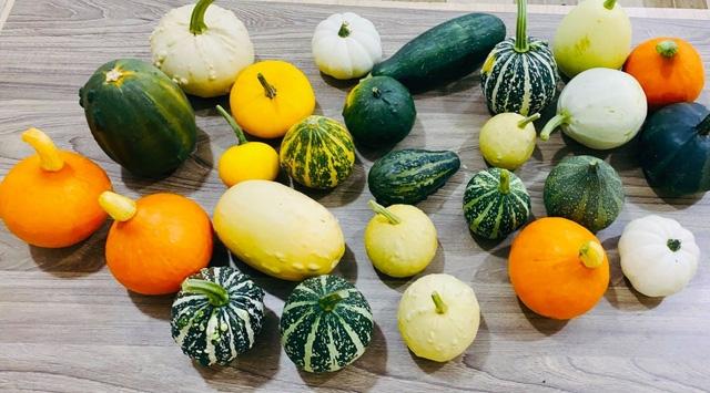 Bí quyết bảo quản thực phẩm trong mùa dịch