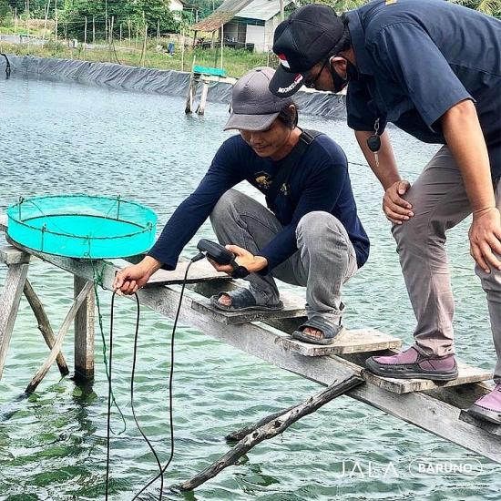 Doanh nghiệp công nghệ nông nghiệp tiếp cận thị trường Việt Nam