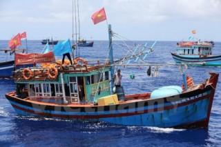 Vì chủ quyền biển đảo quê hương: Không chỉ là mưu sinh