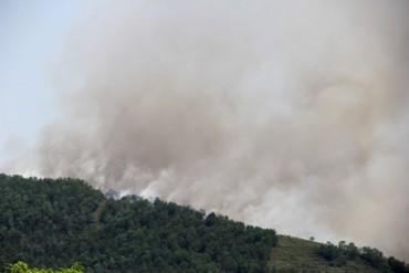 Thanh Hóa: Do nắng nóng, liên tiếp xảy ra cháy rừng