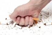 Nhiều hoạt động trong phòng chống tác hại của thuốc lá