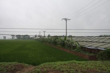 Giao đất dồn điền đổi thửa đã quy hoạch cho người dân