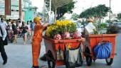 Bảo đảm vệ sinh môi trường thành phố trong dịp Tết