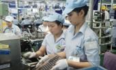 Sớm xây dựng chương trình  chăm lo tết cho người lao động