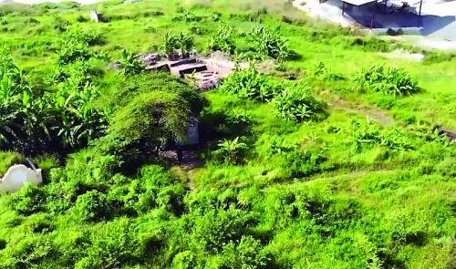Di chỉ Vườn Chuối: Không còn hiện tượng đào trộm và ăn cắp hiện vật