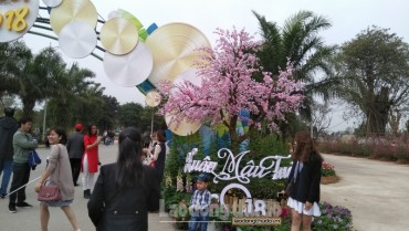Du khách lạc lối trong rừng hoa Lễ hội Xuân 3 Miền