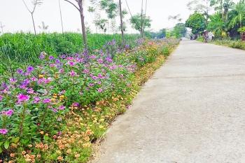 Phụ nữ Hà Nội phát động Cuộc thi đoạn đường, tuyến phố nở hoa