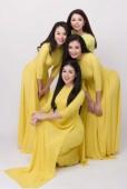 Mộc Miên concert - đêm nhạc bán cổ điển đầu tiên đến với khán giả Việt