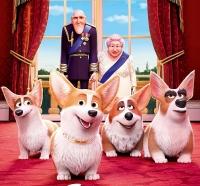 'Corgi: Những chú chó Hoàng gia': Món quà cho các bạn nhỏ nhân dịp nghỉ lễ 30/4