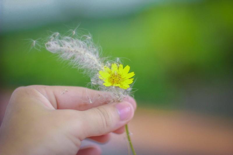 Yêu một người, có hạnh phúc từ đầu đến cuối?