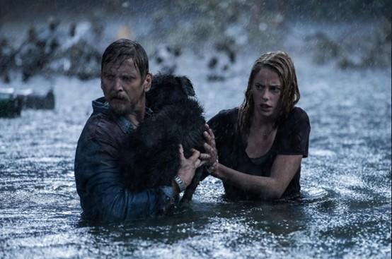 Điểm danh 5 bộ phim siêu bão kinh hoàng nhất trên màn ảnh