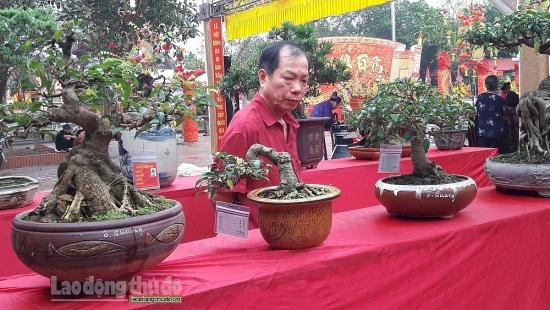 Hội chợ Du lịch làng nghề truyền thống và sinh vật cảnh huyện Thanh Oai năm 2020