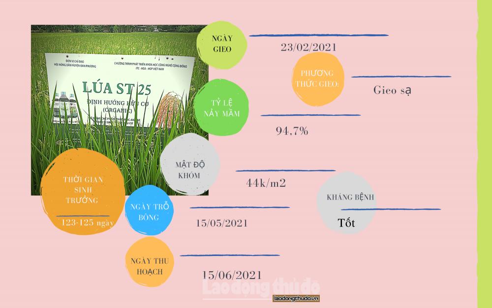 Hành trình gieo hương vào đất