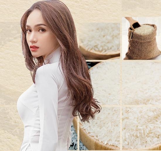 Hoa hậu Hương Giang quyên góp 10 tấn gạo hỗ trợ Đà Nẵng chống dịch Covid-19