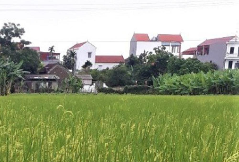 Chủ tịch UBND xã Thọ An bị tạm đình chỉ công tác liên quan đến việc để tổ chức đám tang đông người