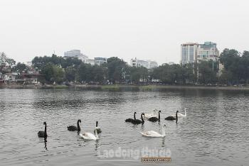 Tu bổ, tôn tạo di tích hồ Thiền Quang: Tiếp tục xin ý kiến đồng thuận của nhân dân