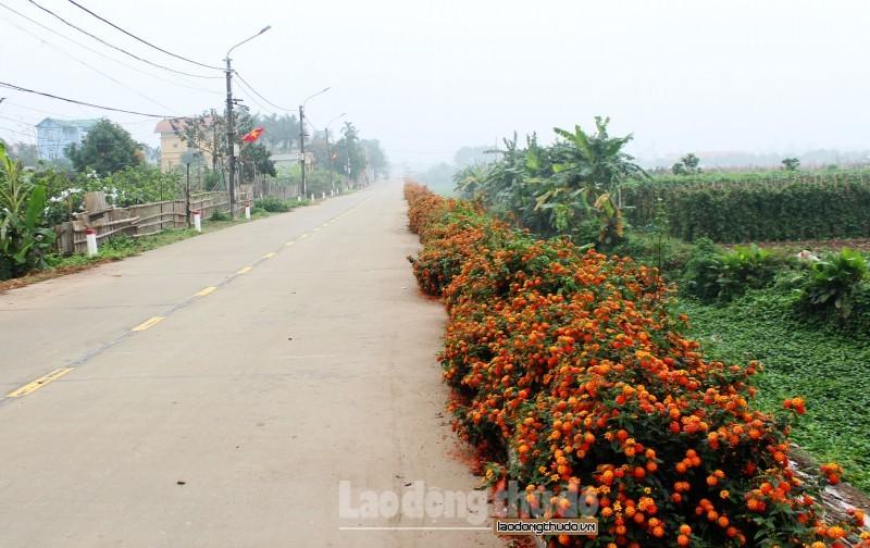Huyện Thanh Trì tập trung thực hiện các nhiệm vụ trọng tâm đột phá trong năm 2019