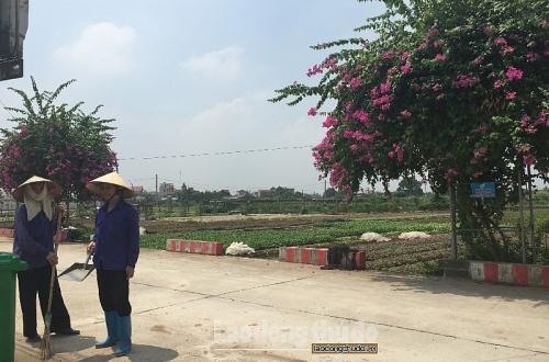 Thường Tín triển khai Kế hoạch hưởng ứng Ngày Pháp luật Việt Nam