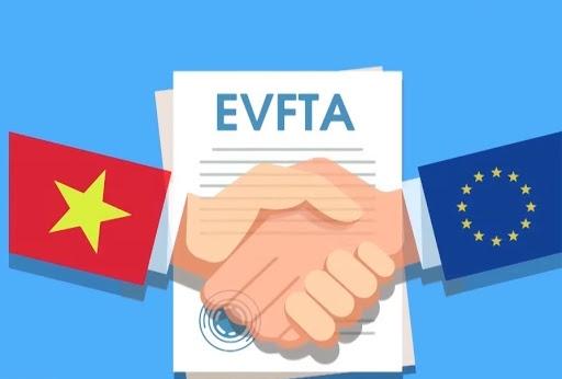 Nhiều doanh nghiệp chưa quan tâm đến VEFTA