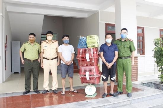 Công an tỉnh Nghệ An bắt vụ vận chuyển trái phép 7 cá thể hổ