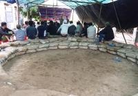 Đà Nẵng: Bắt quả tang hơn 20 đối tượng đánh bạc tại sới gà