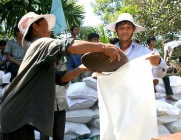 Chính phủ xuất cấp gạo cho hai tỉnh Gia Lai và Đắk Lắk