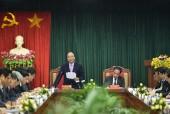 Phát triển kinh tế lâm nghiệp là lối ra cho Tuyên Quang