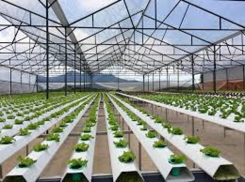 Dành ít nhất 100.000 tỉ đồng cho vay nông nghiệp ứng dụng công nghệ cao