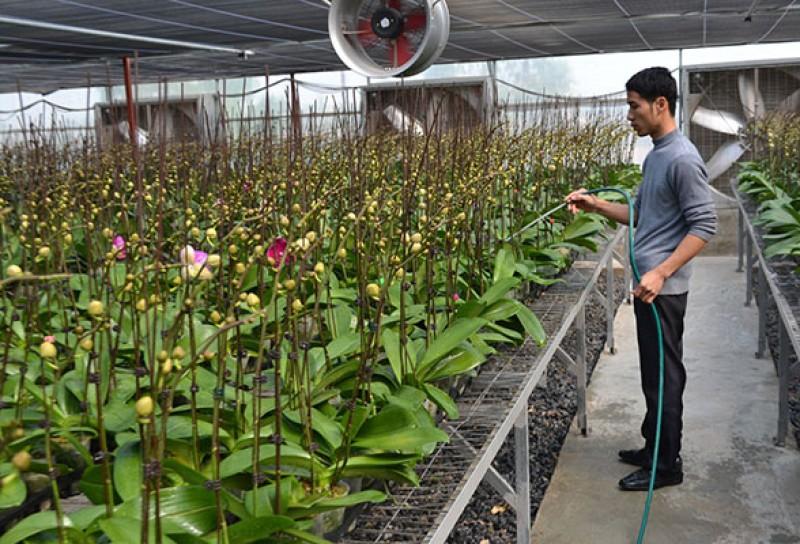 Tiết giảm chi phí để giảm lãi suất cho vay nông nghiệp công nghệ cao