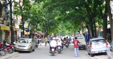 Kéo dài phố Nguyễn Đình Chiểu đến Đại Cồ Việt