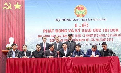 Huyện Gia Lâm: Đưa phong trào nông dân sát với nhiệm vụ chính trị