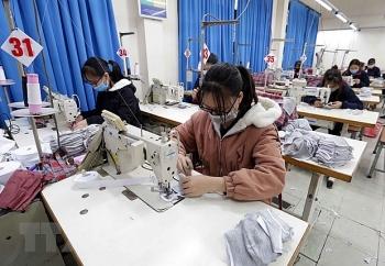 Làm tốt công tác dự báo thị trường lao động trong năm 2021