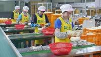 Người lao động Việt Nam tại Hàn Quốc được hỗ trợ tối đa