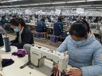Hơn 5 triệu lao động phải ngừng việc do dịch Covid-19