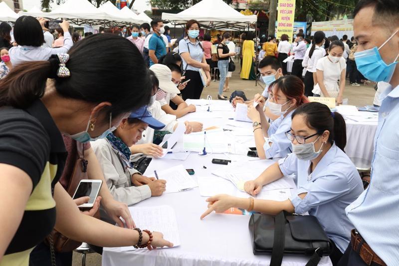 Hướng dẫn thu thập thông tin về thị trường lao động