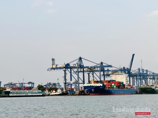 Thành phố Hồ Chí Minh thu ngân sách hơn 198.000 tỷ đồng trong 6 tháng đầu năm
