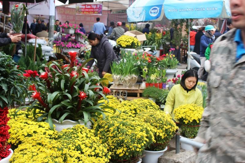 Hương sắc mùa xuân trên chợ hoa Vạn Phúc