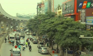 Kỳ 2: Hiệu quả từ những mảng xanh trong đô thị