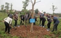 Sơn Tây phát động Tết trồng cây