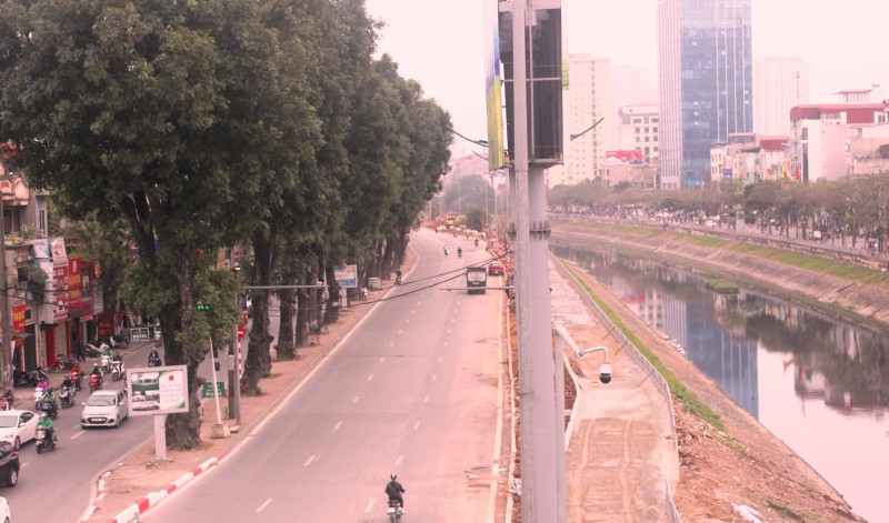 Hà Nội dự kiến di chuyển 1.900 cây xanh để mở rộng đường