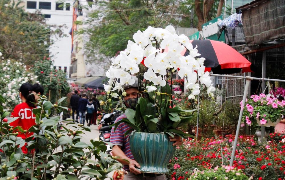 Trước dịch Covid-19, người dân đeo khẩu trang đi chợ hoa Tết Vạn Phúc