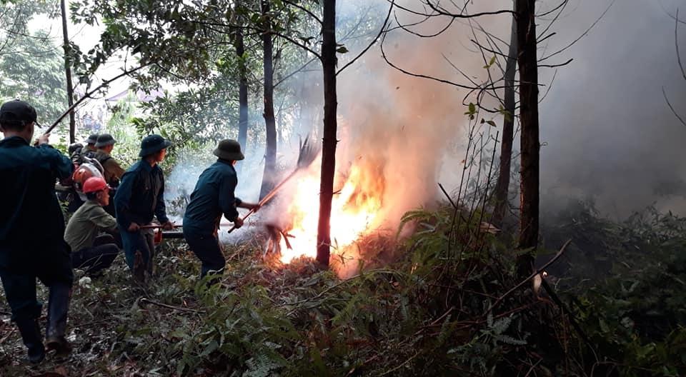 Huyện Ba Vì: Tăng cường bảo vệ, phòng chống cháy rừng