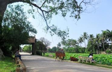 Làng cổ Đường Lâm được công nhận điểm du lịch