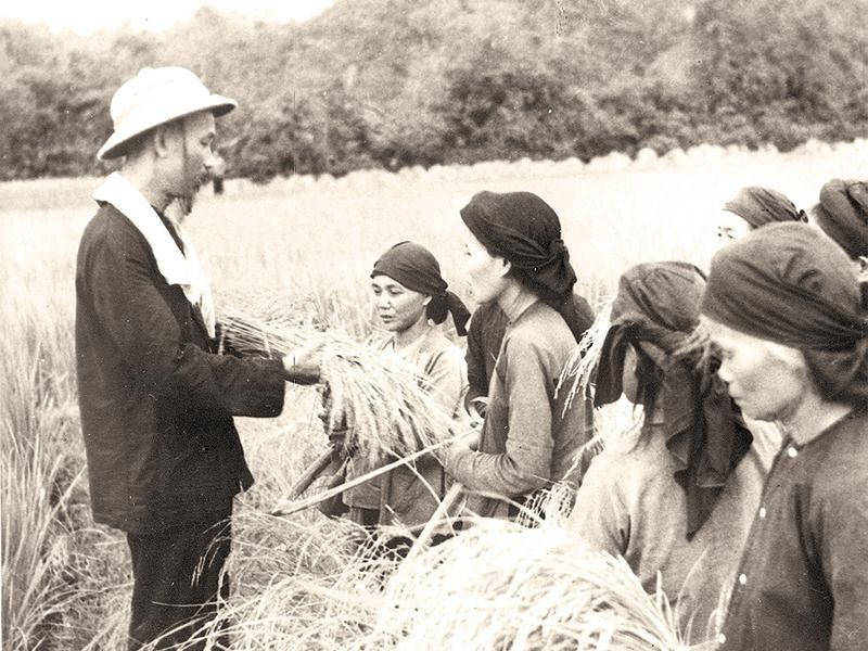 Thấm nhuần tư tưởng Hồ Chí Minh trong xây dựng chính sách tam nông ở Hà Nội