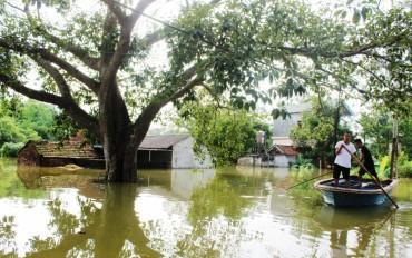 Phòng chống biến đổi khí hậu để phát triển bền vững