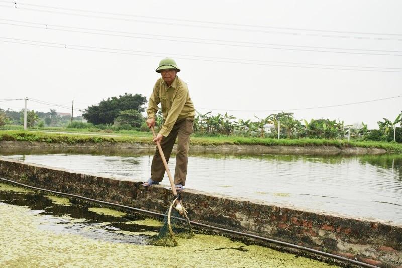Ứng Hòa tìm hướng phát triển kinh tế bền vững