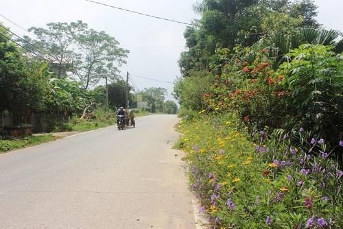 Huyện Ba Vì diện mạo nông thôn có nhiều khởi sắc